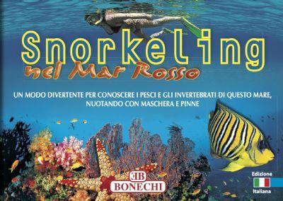 Snorkeling nel Mar Rosso